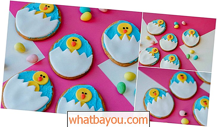 Fun Easter Chick và Egg Sugar Cookies Recipe