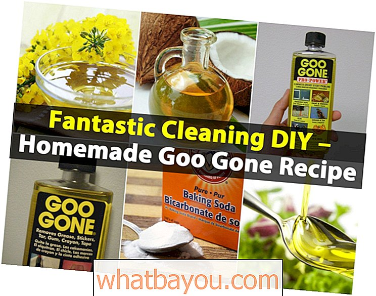 Fantastic Cleaning DIY - Homemade Goo Gipe Recipe